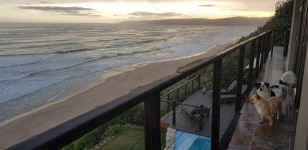 Pet Friendly Beachfront Villa in Wilderness