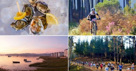 Variety of events and activities in Knysna during the Oyster Festival
